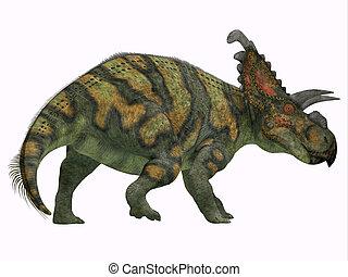 Albertaceratops Dinosaur Tail