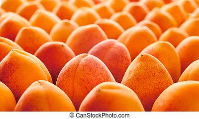 albicocca, frutta
