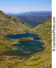 albina, mt, kosciuszko, nsw, lago