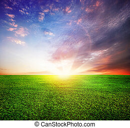 albo, zachód słońca, wschód słońca, zielone pole, piękny