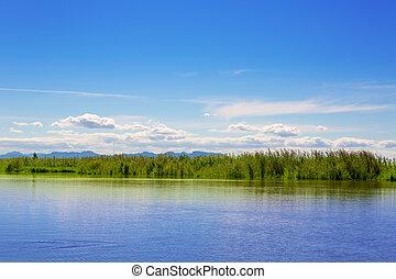 albufera, lac, dans, valence, dans, a, ensoleillé, bleu, jour