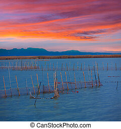 Albufera sunset lake park in Valencia el saler Spain -...