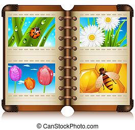 Album - Vector illustration of album with nature motives.