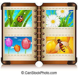 Album - Vector illustration of album with nature motives.