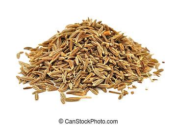 alcaravea, semillas