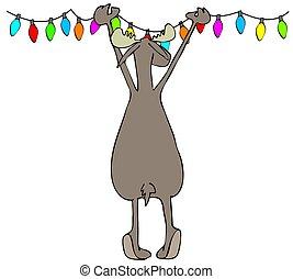 alce, ahorcadura, luces de navidad