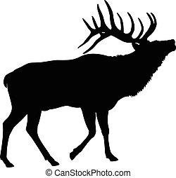 alce, cervo, silhouette