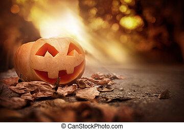 alegre, calabaza, en, un, otoño, halloween, tarde