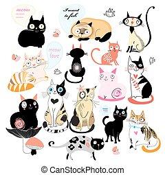 alegre, conjunto, de, gatos