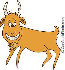 alegre, goat, rojo