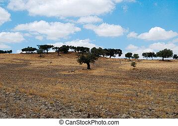 alentejo, paysage