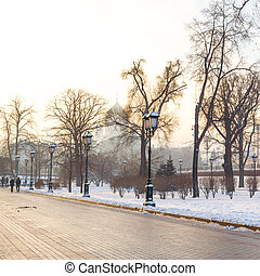 Alexander Garden in winter