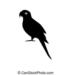 Alexandrine parrot silhouette icon in flat style