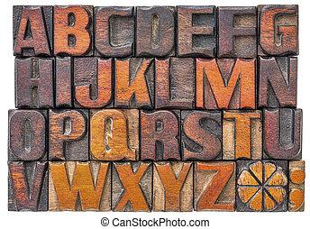 Alfabet, abstrakt, ved, typ