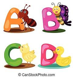 alfabet, dier, brief, illustrator
