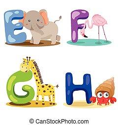 alfabet, illustrator, dier, brief