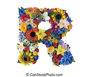 alfabet, r, -, bloem