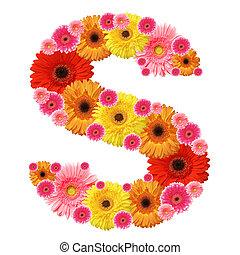 alfabet, s, blomma
