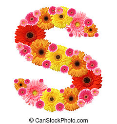 alfabet, s, blomst