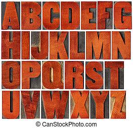 alfabet, set, in, letterpress, hout, type