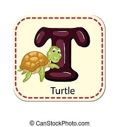 alfabet, t, illustratie, vrijstaand