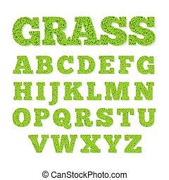 alfabet, trawa, zielony