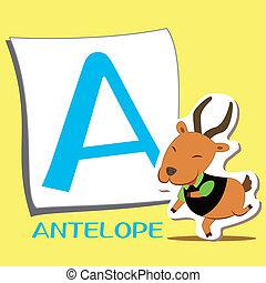 alfabeto, animale