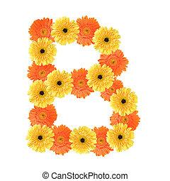 alfabeto, b, flor, criado