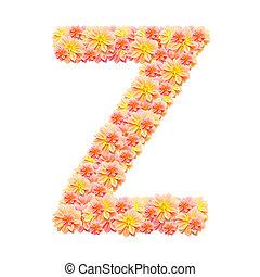 alfabeto, branca, isolado, z