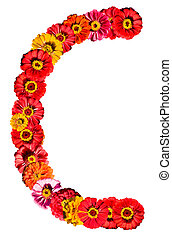 alfabeto, c, flor, -