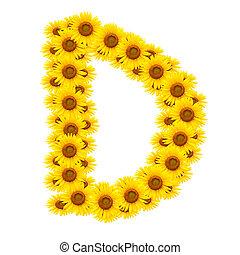 alfabeto, d, girassol