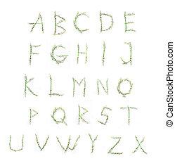 alfabeto, de, flores, lírio vale, ligado, um, fundo branco