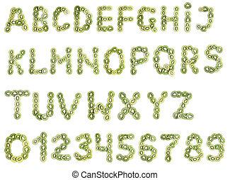 alfabeto, de, kiwi
