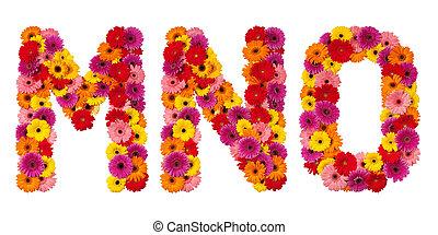 alfabeto, este prego, isolado, -, m, carta n, flor, branca