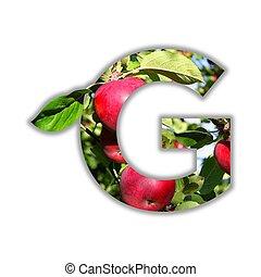 alfabeto, feito, fruta, fresco