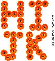 alfabeto, flor