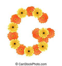 alfabeto, flor, g, criado