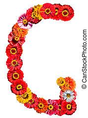 alfabeto, flor, -, g