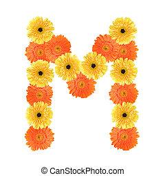 alfabeto, flor, m, criado