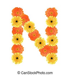 alfabeto, flor, n, criado