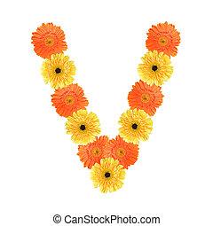 alfabeto, flor, v, criado