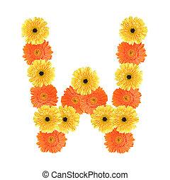 alfabeto, flor, w, criado