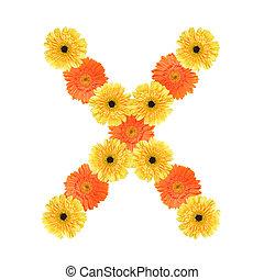 alfabeto, flor, x, criado