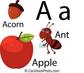 alfabeto, illustratore