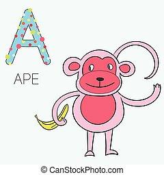 alfabeto, illustrazione, vettore, lettera, bambini, scimmia