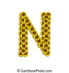 alfabeto, isolado, girassol, n