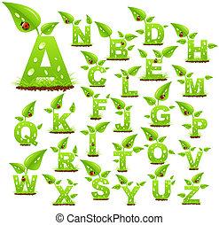 alfabeto, natureza