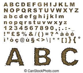 alfabeto, quemado, pergamino