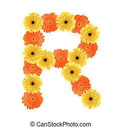 alfabeto, r, flor, criado