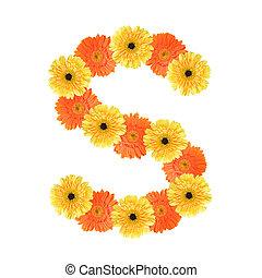 alfabeto, s, flor, criado